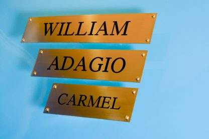 Personalised Brass Horse Stable Name Plate (250mm x 50mm)